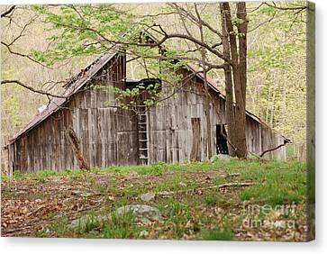 Pendleton County Barn Canvas Print by Randy Bodkins
