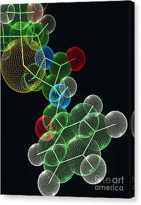 Penicillin Drug Molecule Canvas Print by Alfred Pasieka