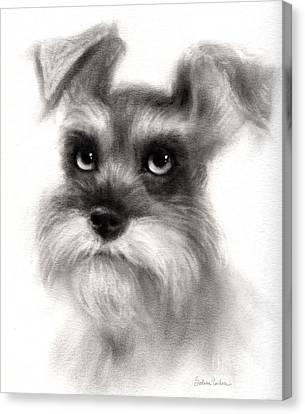 Pensive Schnauzer Dog Painting Canvas Print by Svetlana Novikova