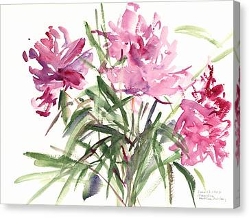 Peonies Canvas Print by Claudia Hutchins-Puechavy