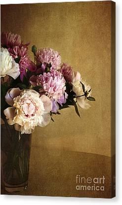 Peonies Canvas Print by Elena Nosyreva