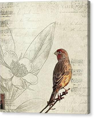 Perched Canvas Print by Rebecca Cozart