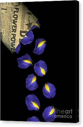 Petal Chips Canvas Print by Christian Slanec