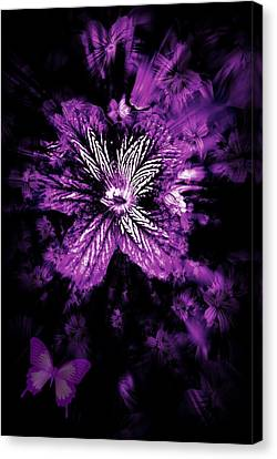Petals From The Purple Canvas Print by Amanda Eberly-Kudamik