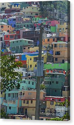 Petionville Mountain Canvas Print by Jim Wright