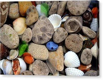 Petoskey Stones Lll Canvas Print by Michelle Calkins