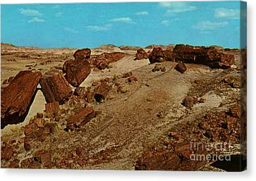 Petrified Forest National Park Canvas Print by Ruth  Housley