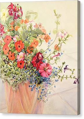Petunias Lobelias Busy Lizzies And Fuschia In A Terracotta Pot Canvas Print by Joan Thewsey