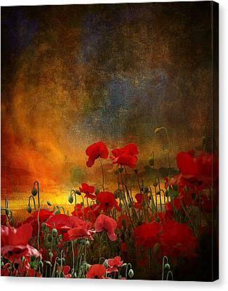 Phil Canvas Print by Jeff Burgess