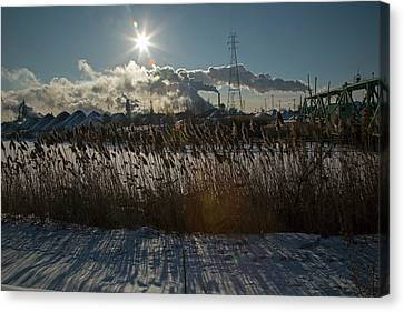 Phragmites Reeds And Steel Mill Canvas Print by Jim West
