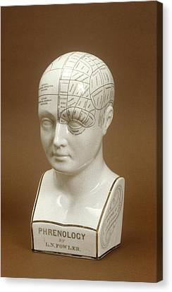 Phrenology Head Canvas Print by Science Photo Library