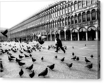 Piazza San Marco Venice Italy 1998 Canvas Print by Heidi Wild