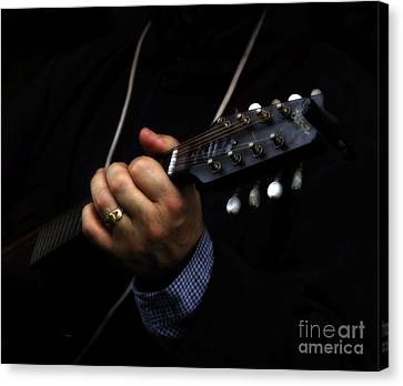 Picking On Gibson Canvas Print by Steven  Digman