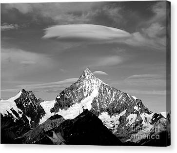 Picture Perfect 2 Canvas Print by Lynn R Morris