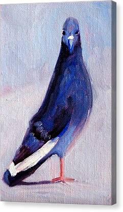 Pigeon Bird Portrait Painting Canvas Print by Nancy Merkle