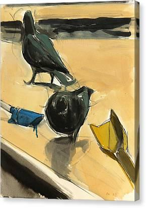 Pigeons Canvas Print by Daniel Clarke