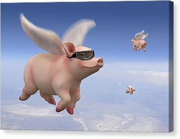 Pigs Fly Canvas Print by Mike McGlothlen