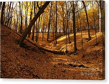 Pikes Peak Park Yellow Fall Canvas Print by Joan Liffring-Zug Bourret