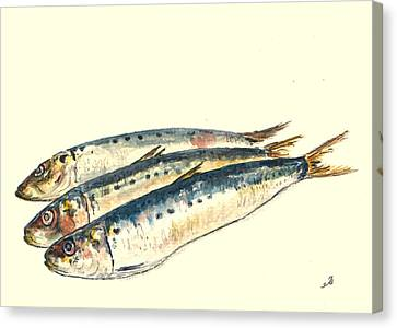 Pilchards Canvas Print by Juan  Bosco