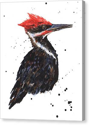 Pileated Woodpecker Watercolor Canvas Print by Alison Fennell