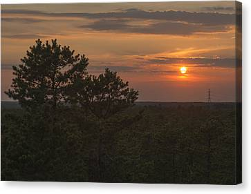 Pine Barrens Sunset Nj Canvas Print by Terry DeLuco