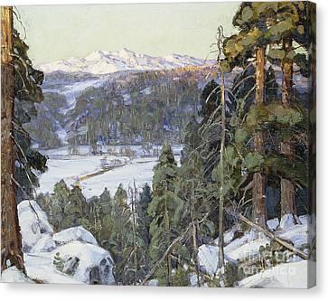Pines In Winter Canvas Print by George Gardner Symons