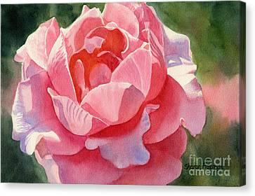 Pink And Orange Rose Blossom Canvas Print by Sharon Freeman