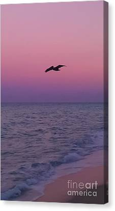 Pink Beach Sunset Canvas Print by Charlie Cliques