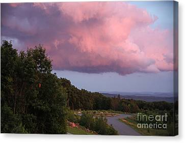 Pink Cloud Canvas Print by Randi Shenkman