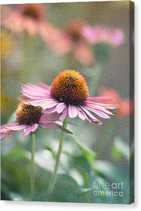 Pink Cone Canvas Print by Rebecca Cozart