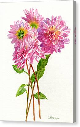 Pink Dahlias Canvas Print by Sharon Freeman