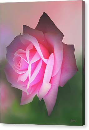 Pink Delight Canvas Print by Zelma Hensel
