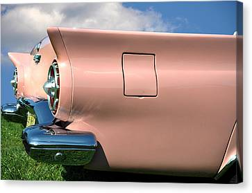 Pink Fins Canvas Print by Bill Cannon
