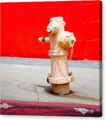Pink Fire Hydrant Canvas Print by Art Block Collections