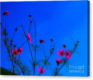Pink Green And Blue Canvas Print by Tina M Wenger