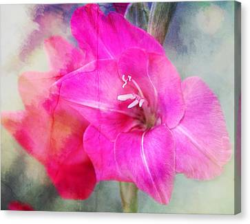 Pink In The Clouds Canvas Print by Cathie Tyler