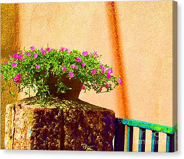 Pink Potted Flowers And Bench Canvas Print by Tina M Wenger