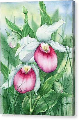 Pink Showy Lady Slippers Canvas Print by Johanna Axelrod