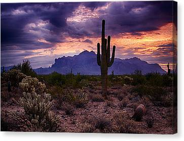 Pink Skies At The Superstitions Canvas Print by Saija  Lehtonen