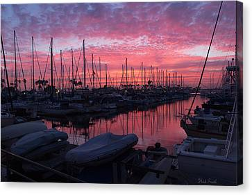 Pink Summer Sunset  Canvas Print by Heidi Smith