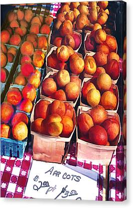 Pints Of Apricots On Checkered Cloth Canvas Print by Elaine Plesser