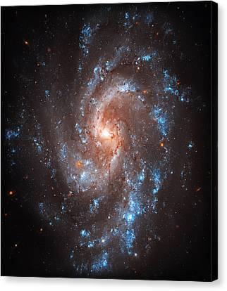 Pinwheel Galaxy Canvas Print by The  Vault - Jennifer Rondinelli Reilly