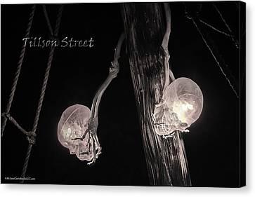 Pirate Mast Lights Canvas Print by LeeAnn McLaneGoetz McLaneGoetzStudioLLCcom