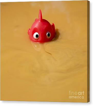 Plastic Fish In Some Polluted Water. Canvas Print by Bernard Jaubert