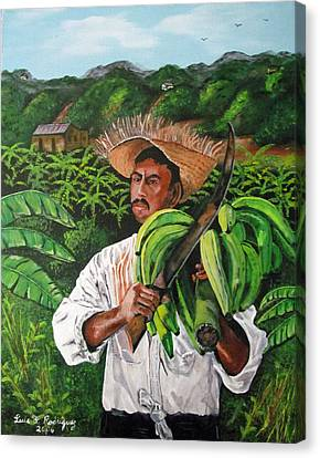 Platano Man Canvas Print by Luis F Rodriguez