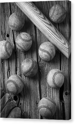 Play Ball Canvas Print by Garry Gay