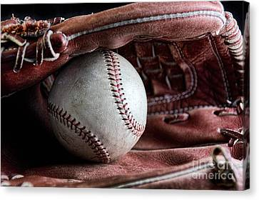 Play Ball Canvas Print by Peggy Hughes