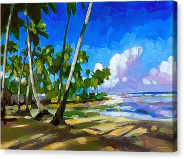 Playa Bonita Canvas Print by Douglas Simonson