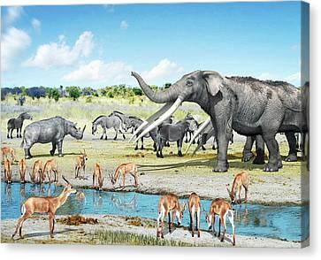 Pliocene Fauna Canvas Print by Jose Antonio Pe�as