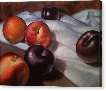 Plums And Nectarines Canvas Print by Timothy Jones